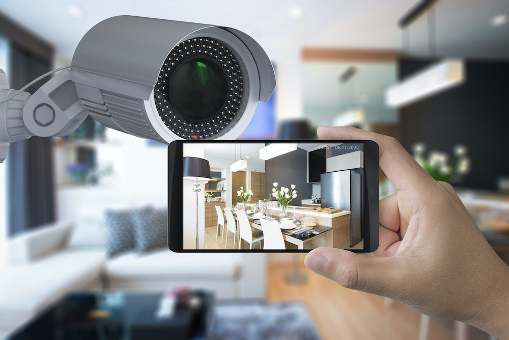 Crystal Vision Security Camera Review
